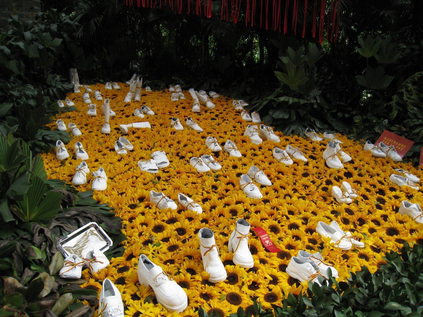 цветя колумбия